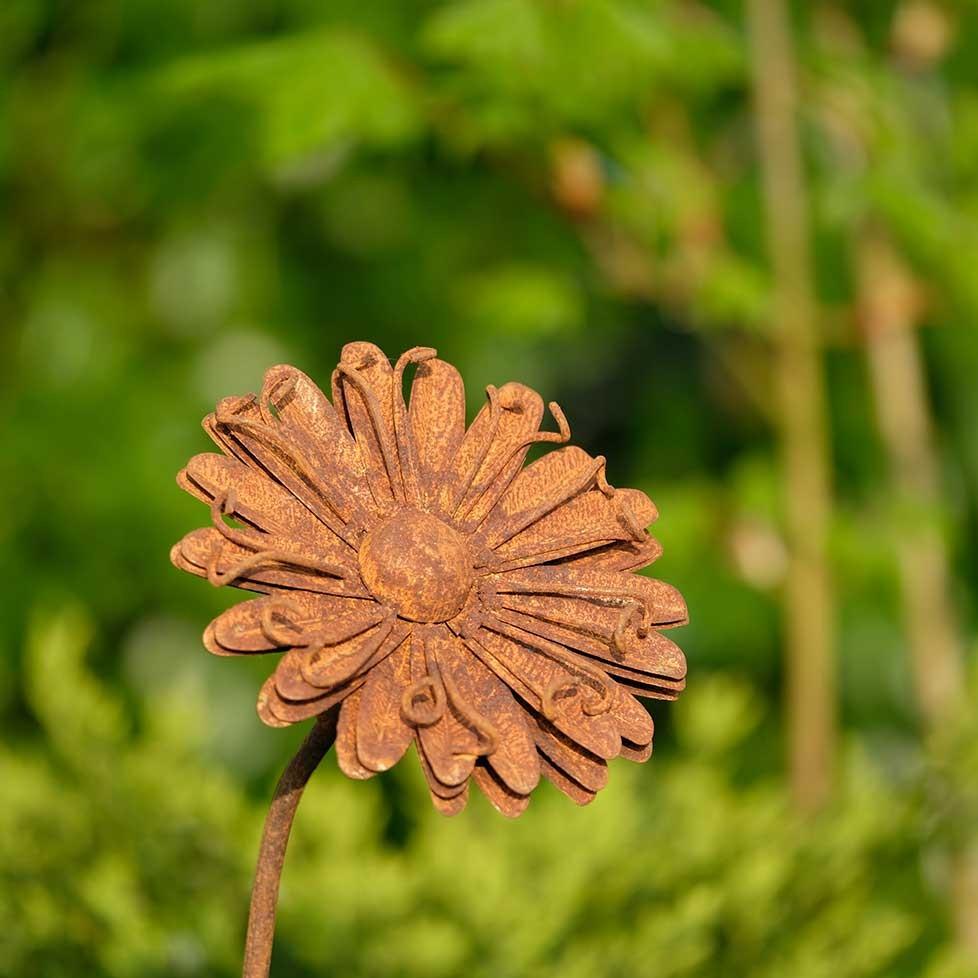 Fleur en métal rouillé